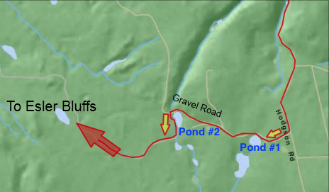 Image B: Turn left after second pond
